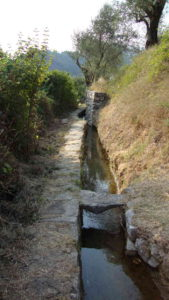 nespolo irrigatiekanaal